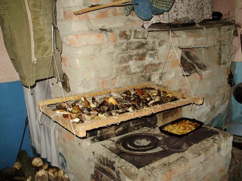 Сушилка грибов своими руками 551
